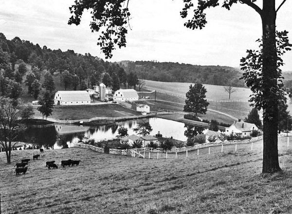 Farm of Dr. Hazlip Near Grafton, Taylor County, W. Va.<br /> Date 1960