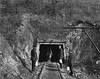 Four miners are entering a shaft at an unidentified coal mine near Grafton, West Virginia.