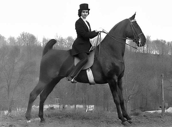 Betsy Mahaffey with Horse Nightmare, Grafton Horse Show Winner, Terra Alta, Preston County, W. Va.