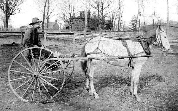 James L. Hall, a rural mail carrier using horse and buggy..  This is the rig he used to deliver the mail. Photo may have been taken at Country Club Road in Fairmont, West Virginia.