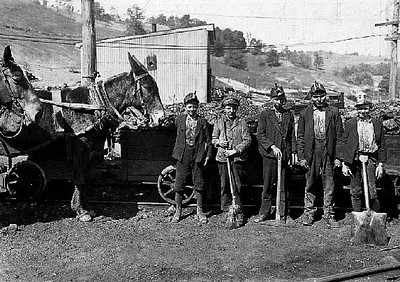 Tipple Boy and Drivers. Maryland Coal Co. Mine, near Sand Lick, Grafton, W. Va. Boy with mule was afraid at first to be in the picture: another boy said he feared we might make him go to school. Location: Grafton, West Virginia. Date: 1908 September. Photos of child labour by Lewis Wickes Hine.