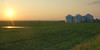 Three very large new grain bins at sunset, on site being developed by the Bray family NW of Arden.