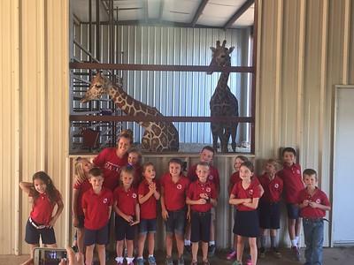 2016-2017 1st Grade