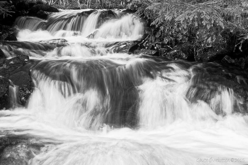 Vårbekk etter regn.<br /> Spring stream.