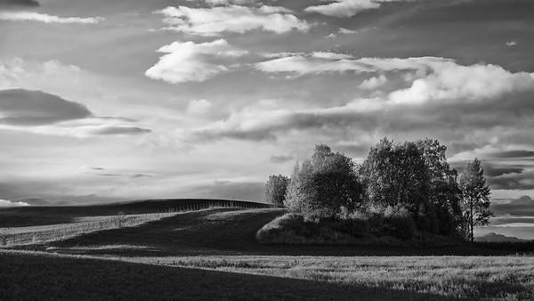 Kveld (evening)