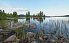 Vassbråa (lake)