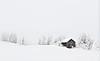 Desembertåke, Melbostad (Foggy winter's day)