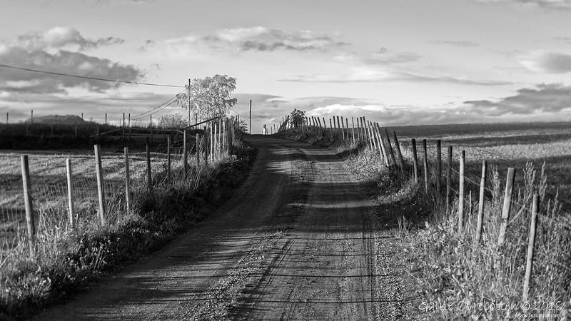 Gardsveg (road)