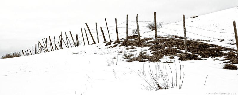 Gjerde II<br /> Barbed wire II