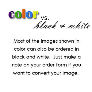 color vs bw