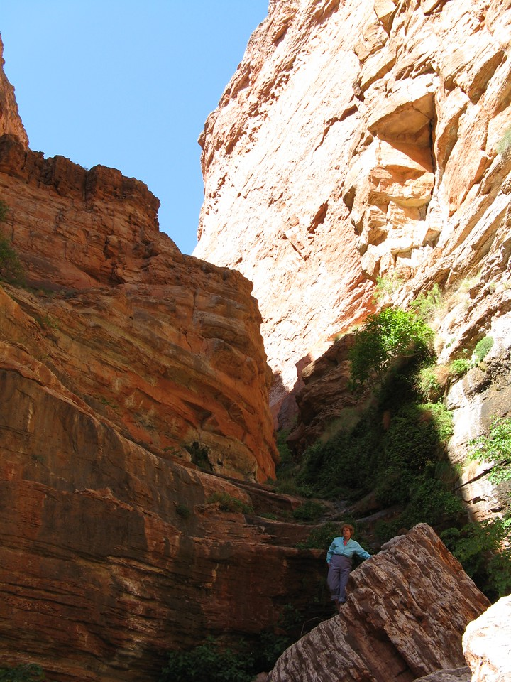 We did not climb far enough up this side canyon to see the Royal Arches.