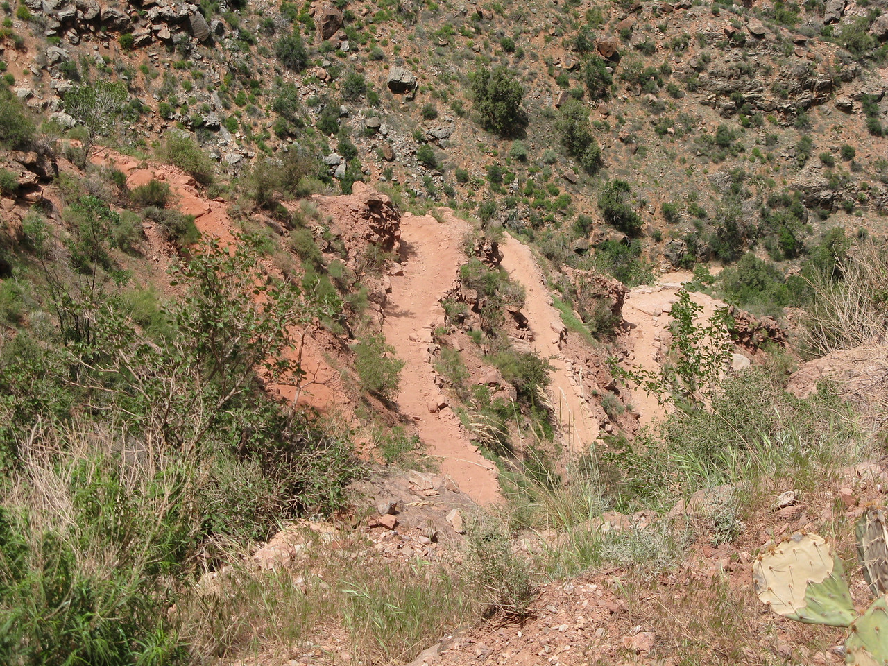 The switchbacks through the Redwall Limestone are called Jacobs Ladder.