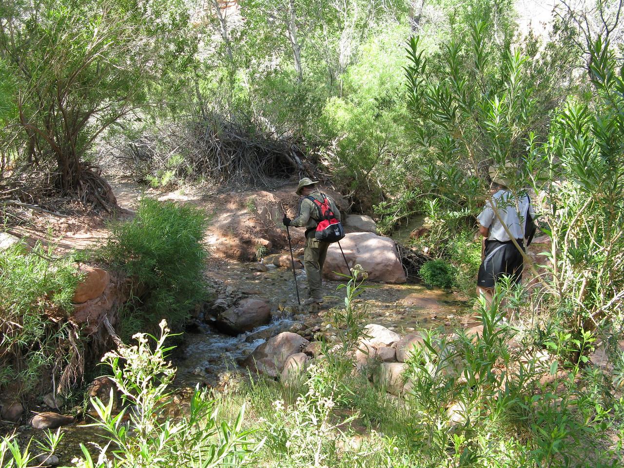 We cross the stream on stepping stones. RIchard in the stream, Dariusz behind.