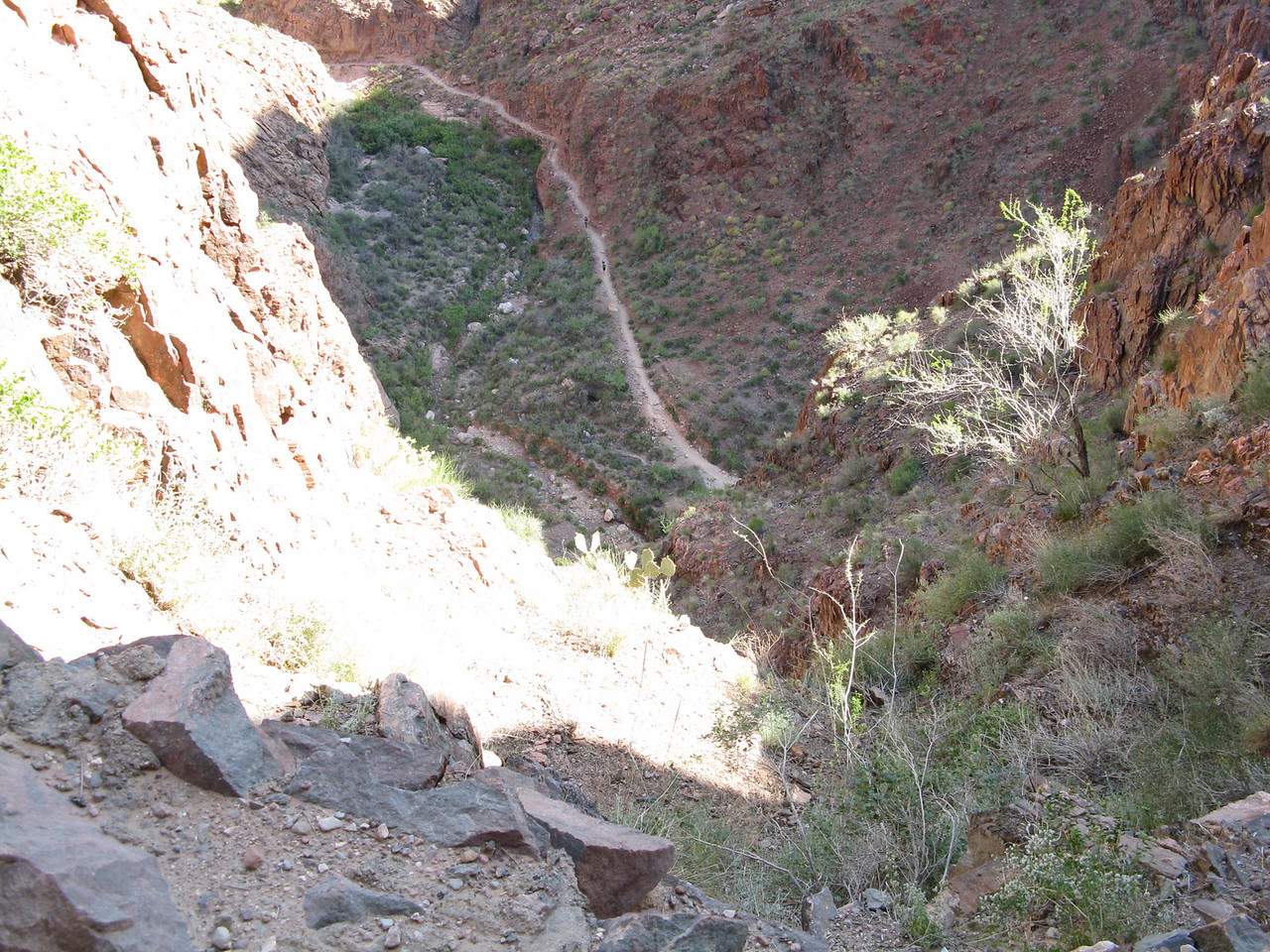 Looking down at the trail on the bottom of Pipe Creek canyon.
