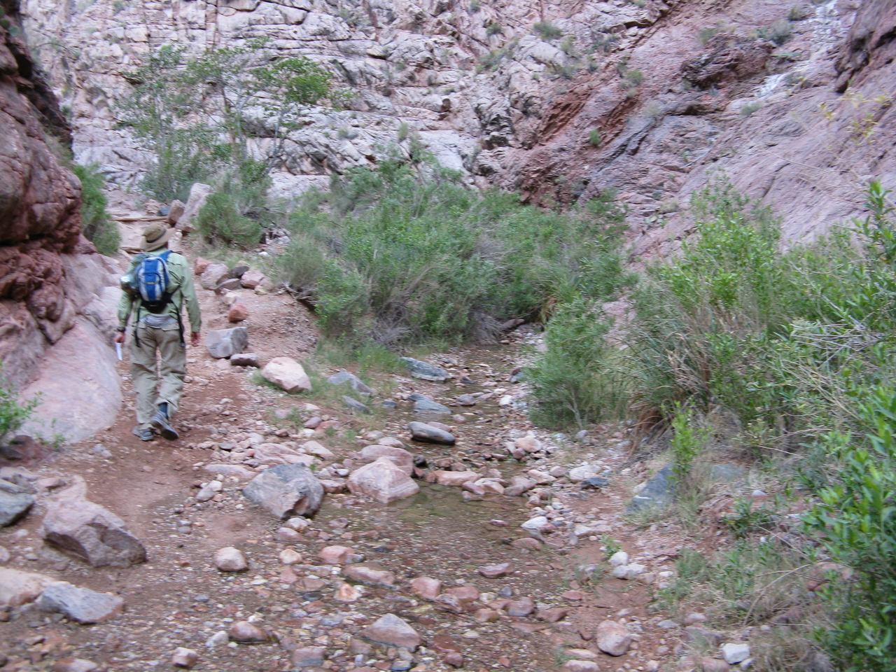 In the spring, the creek flows at the bottom of the canyon.  By summer, it may be dry.   Glenn on the left.