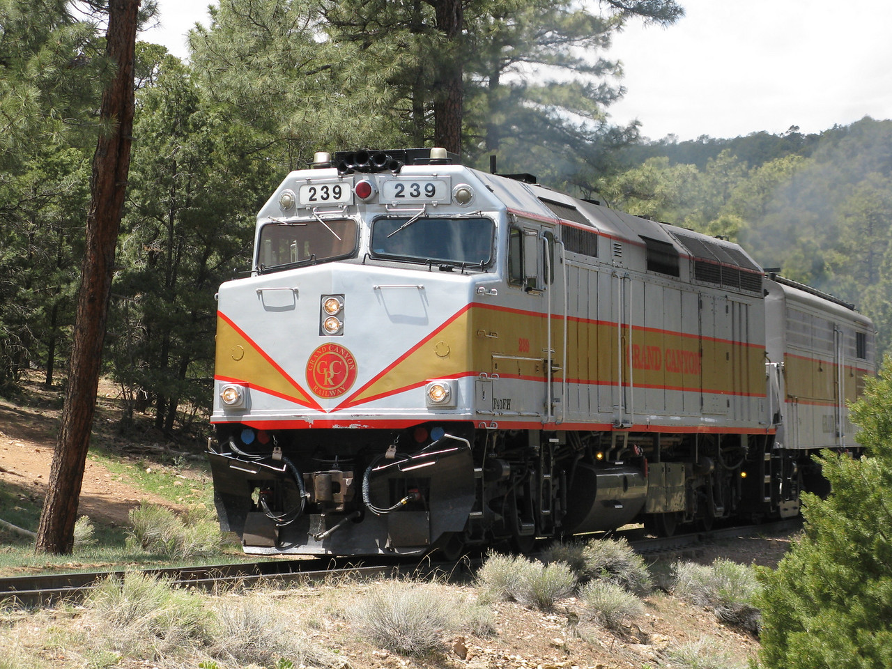 Back up on top in Grand Canyon Village, the Grand Canyon train arrives from Williams.