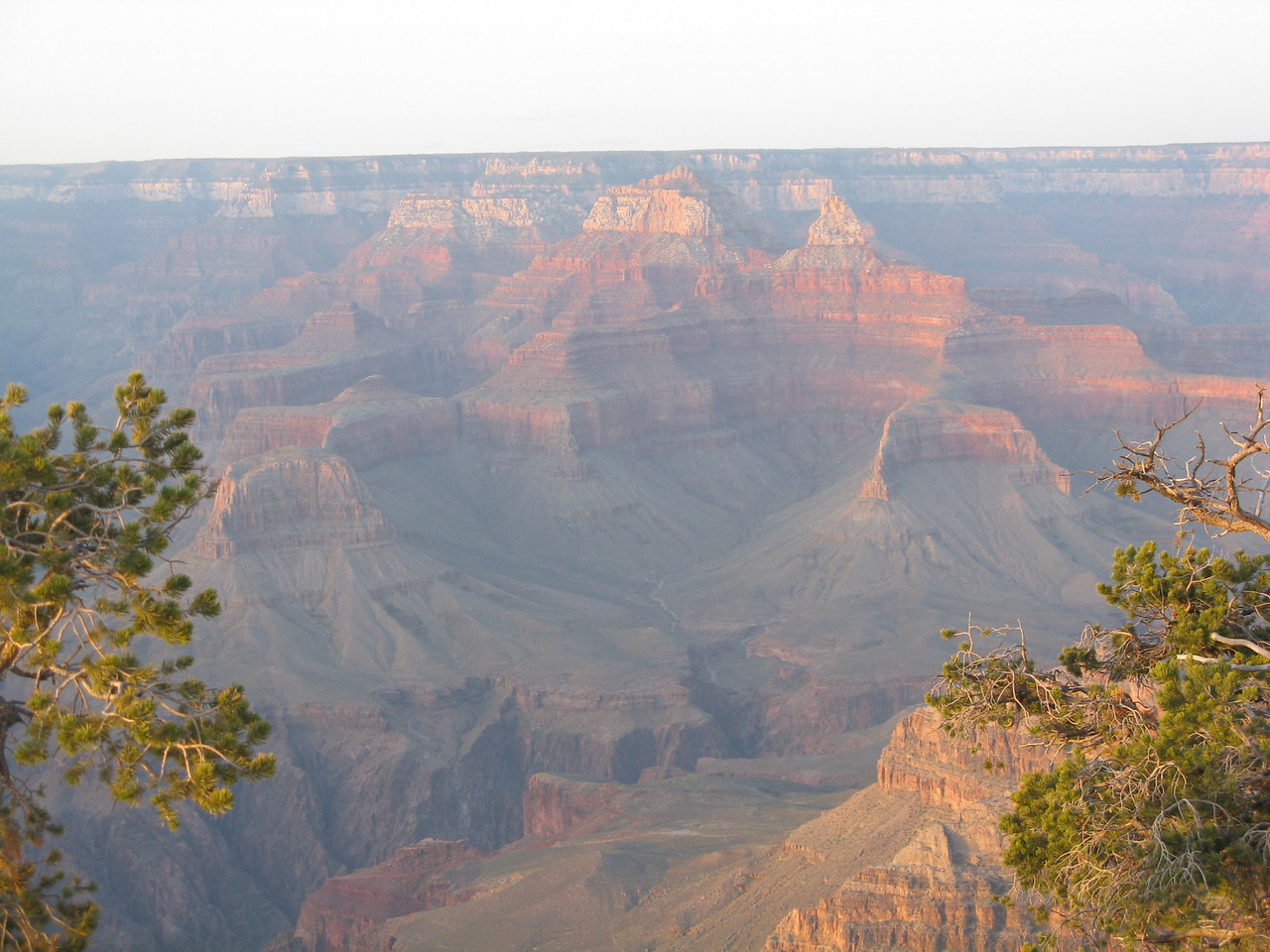The canyon in the evening sun on Thursday, May 8, 2008.  Viewed from Yavapai Point.