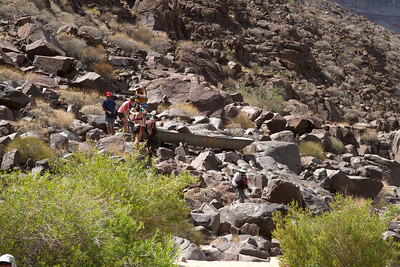 2014_Grand_Canyon_WHDW2_7D 16