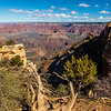 Grand Canyon first look 3-31-19-Day 1_V9A5749