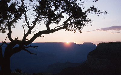 Grand Canyon '66