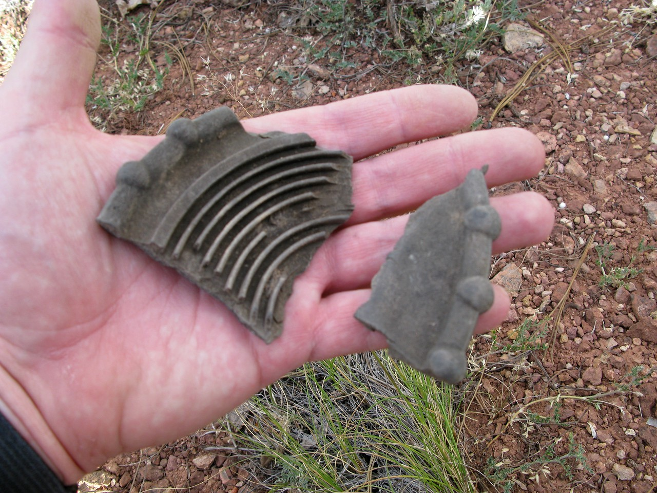 These fragments of plastic were once part of the flight control trim wheels that operated both elevator and rudder trim.