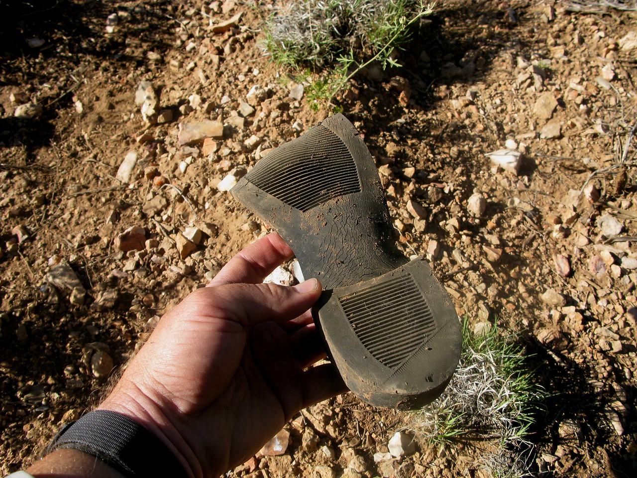 The bottom part of a shoe was located in the debris field.