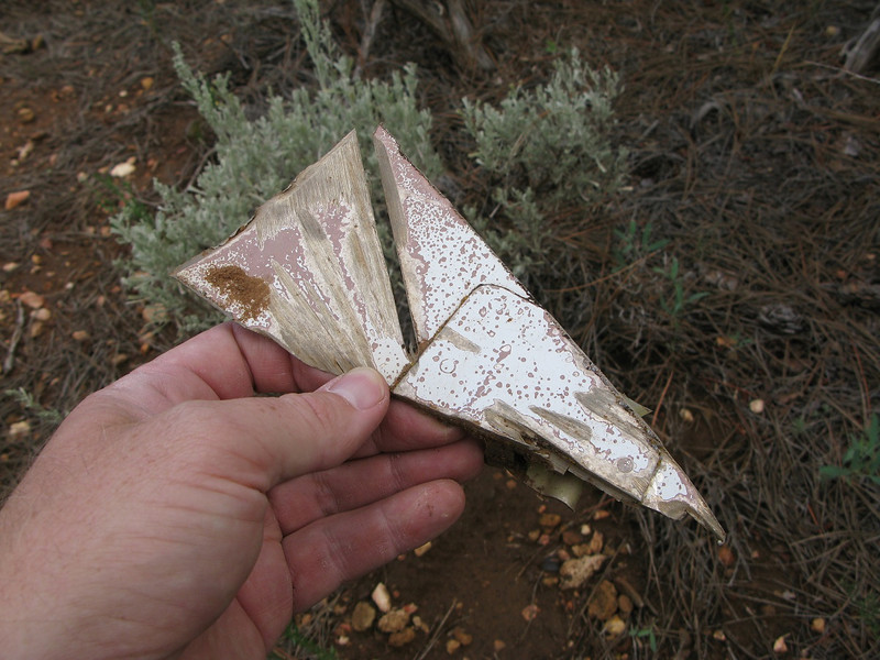 This fragment of wreckage shows clear evidence of a cut from a salvage worker's power saw. <br /> <br /> After the on-site investigation, most of the wreckage was removed from the site by salvage recovery crews.