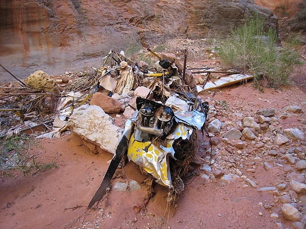 The wreckage is separated in clumped piles of fabric and metal tubing.<br /> <br /> This pile contains some fabric as well as the aircraft's propeller, engine, and engine cowl.