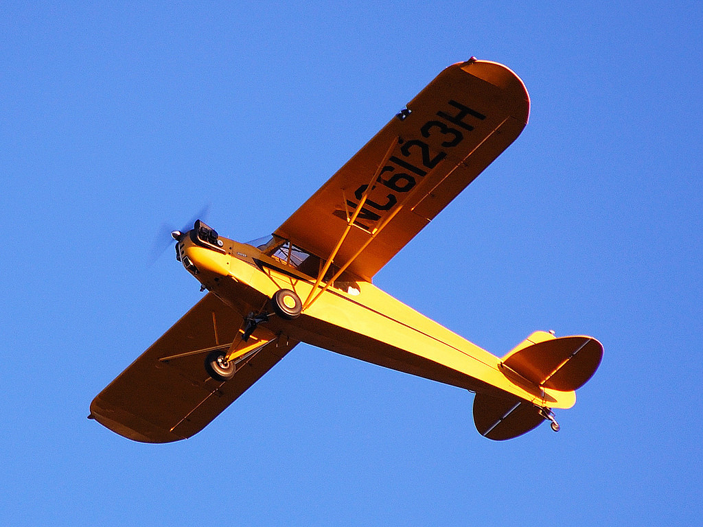 "Both air tour helicopters and even a whitewater rafting trip on the Colorado River witnessed the yellow Piper Cub ""buzzing"" the river at a low altitude.<br /> <br /> Neither witnessed the accident that happened just a few minutes later in Crazy Jug Canyon."