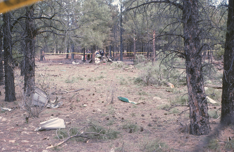 "In the foreground, broken trees along with wing and tail fragments mark the destructive path of ""Adventure One""."