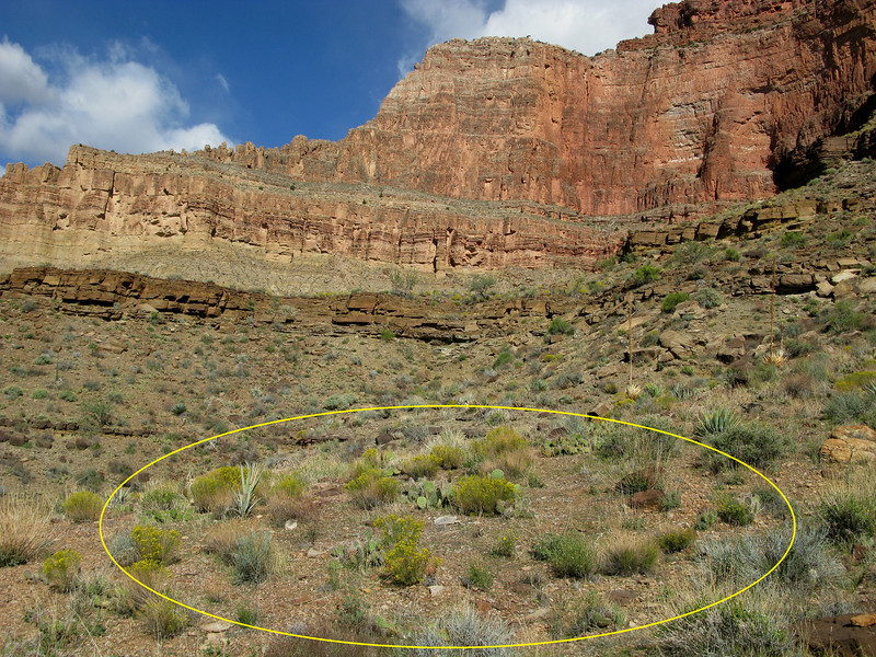 "The crash site of ""Canyon 6"" lies on a gentle 20 degree slope on the southwest side of Mencius Temple.<br /> <br /> The site itself had been cleaned up very well by the Park Service. This was not surprising considering the large amount of wreckage that was present at the dump site near Tusayan."