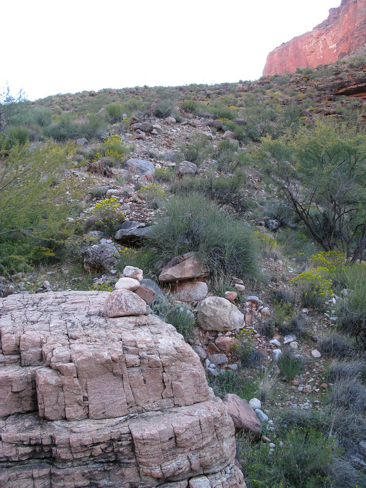THE TONTO PLATEAU<br /> <br /> The route up and onto the Tonto Plateau was marked by a small cairn indicating the hiking route. These routes across the Tonto are often used by long distance canyon hikers and are not considered established trails. Sometimes, only a cairn of rocks placed by another hiker marks the route.