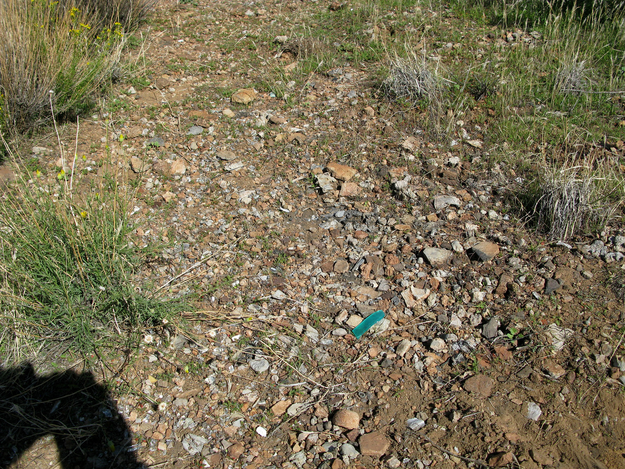 The burn area contained numerous small artifacts that were overlooked by the recovery crews in 1986.
