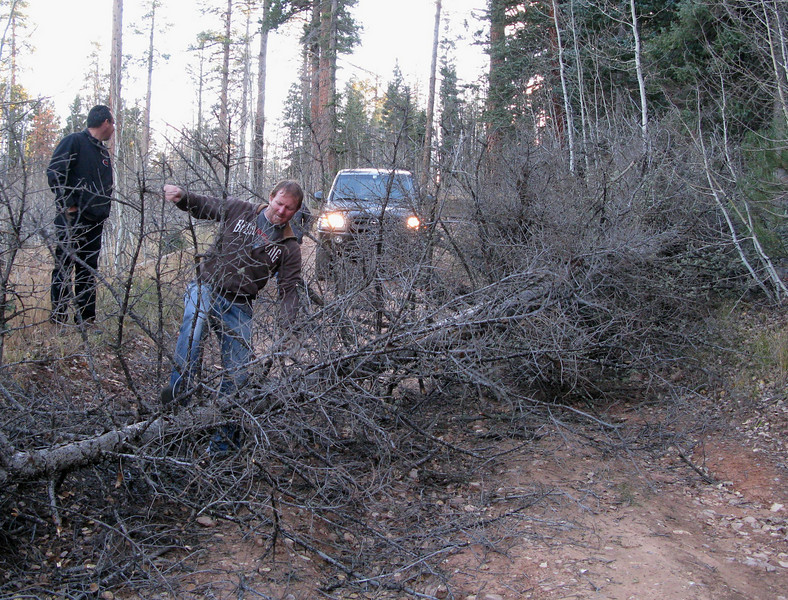 1st. ATTEMPT - OCTOBER 2010<br /> <br /> Trying to leave the North Rim after the first hike attempt, we were faced with numerous wind-fallen trees that blocked the road. Between the four of us we were able to move and/or drive around most of these obstacles. <br /> <br /> Since my next attempt to reach the crash sites would be a solo hike, I decided the best way to avoid these problems would be to ride an ATV to the parking area near Point Sublime.