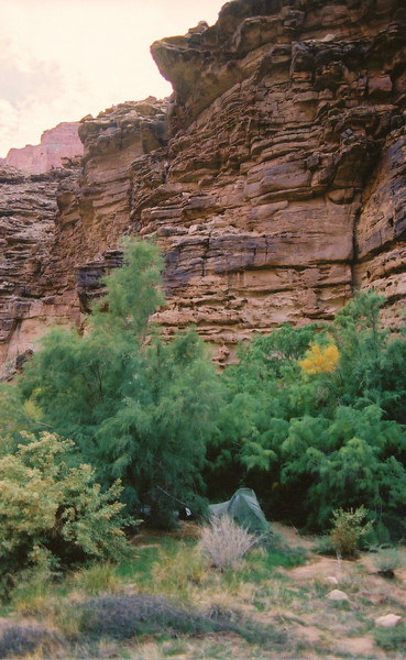 My campsite at Temple Butte was near the river which allowed easy access to the river. The trees provided shade and protection from the wind. (2002 Trip)