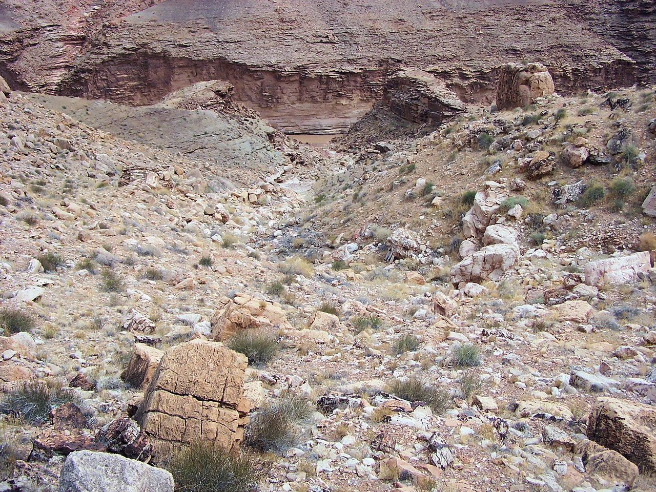 TWA FLIGHT 2 IMPACT SITE<br /> <br /> Looking down into the ravine from the north slope. This was the point of impact for TWA Flight 2. <br /> <br /> Many of the rocks and boulders were displaced in this location and also displayed evidence of impact scarring. <br /> <br /> From this location the aircraft continued to disintegrate only a short distance to the bottom of the ravine.