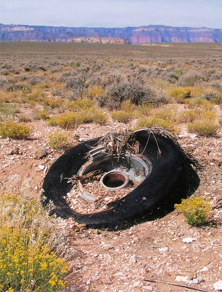 REMAINING WRECKAGE TODAY - NAVAJO TRIBAL LAND:<br /> <br /> Not all of the wreckage from the two airliners was removed from the Navajo Indian Reservation during the clean-up operation of 1976.<br /> <br /> Partially buried is a tire and wheel assembly from the DC-7's main landing gear photographed on the east rim during a 2006 visit to the salvage site. <br /> <br /> During the Fall of 1976, wreckage from both impact sites were brought out of the canyon and deposited here on the Navajo Indian Reservation.<br /> (LostFlights)