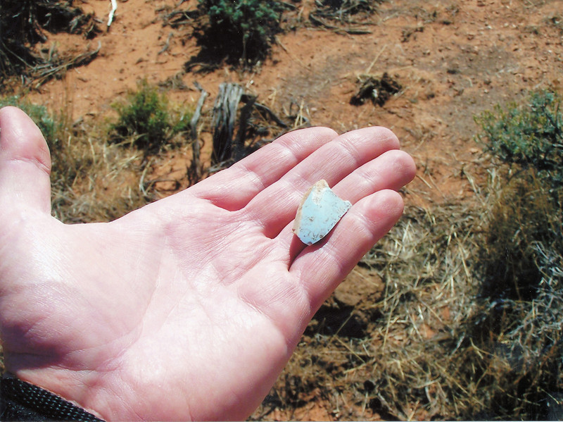 Holding a fragment of light blue ceramic dishware from the United Air Lines flight. Fragments of light tan TWA ceramic dishware were also found at the salvage site. (LOSTFLIGHTS)