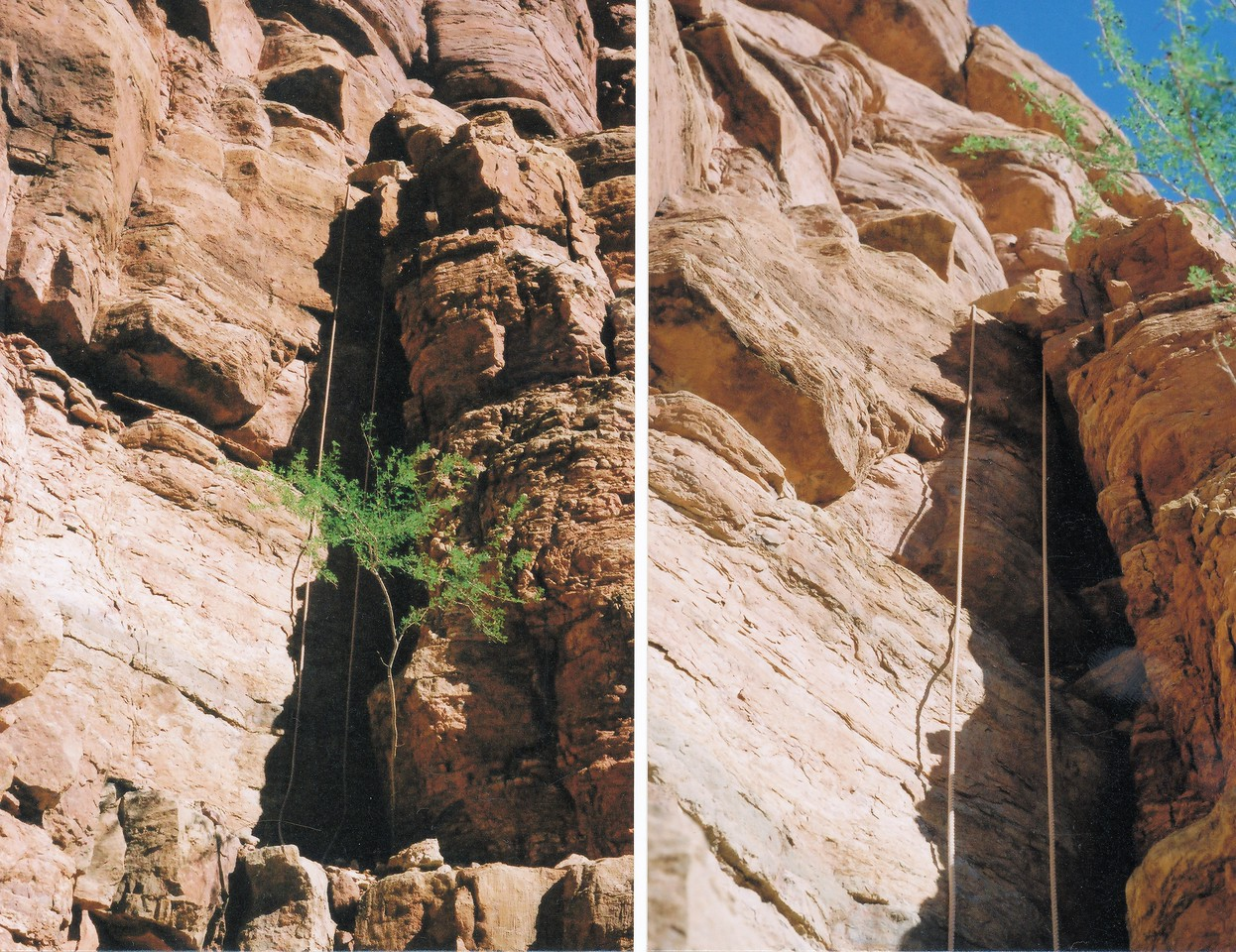 The original ropes used by the 1956 recovery efforts still hang from the cliffs and ledges of Chuar Butte after a half century. (2002 Trip)