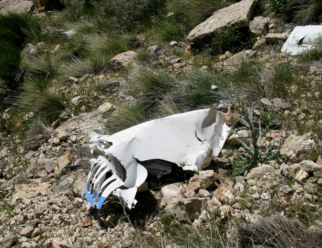 After hiking for just over two hours I finally reached the crash site. <br /> <br /> The first fragment I encountered was a portion of an engine nacelle cowling with a vented inspection door.