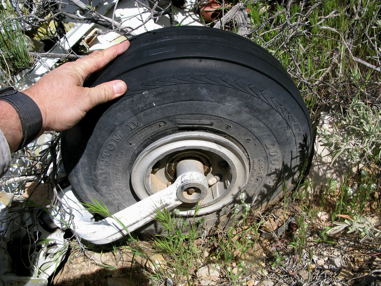 The nose gear tire (Goodyear Flight Custom II) appeared to be brand new with very little if any wear. Probably replaced by a maintenance crew a day or two prior to the accident.