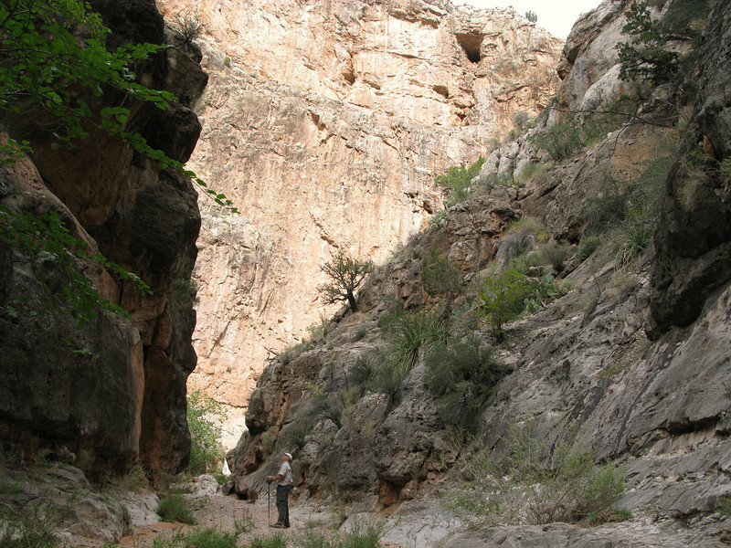 """During my second attempt in November 2008, I thought I found a route to the crash site through this narrow canyon.<br /> <br /> During monsoon season, a steep canyon such as this can be a literal """"Death Trap"""" due to sudden flash floods."""