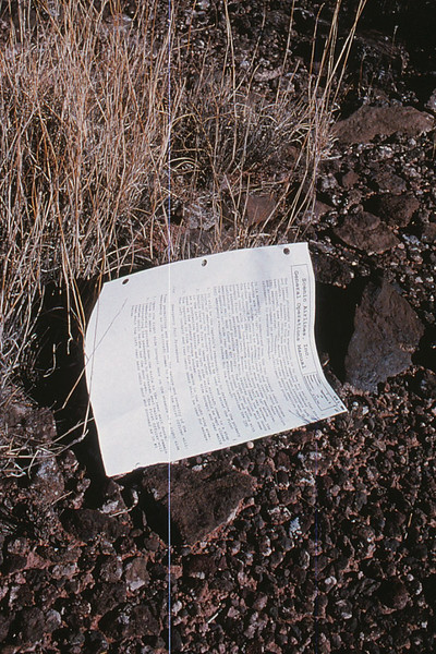 A page from the pilot's company Operating Manual lies amid brush. One of hundreds of pages thrown across the mesa during the accident.<br /> <br /> *THE END*