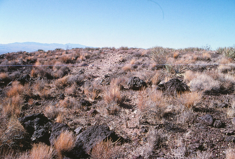 Looking northwest along the initial impact scar.