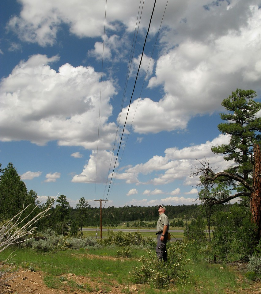 """The location of the electrical power line that """"Canyon 5"""" severed during the accident is still in the same original location."""