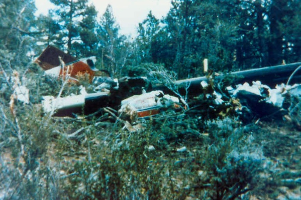 A combination of the initial impact and hitting the trees literally tore the aircraft apart.
