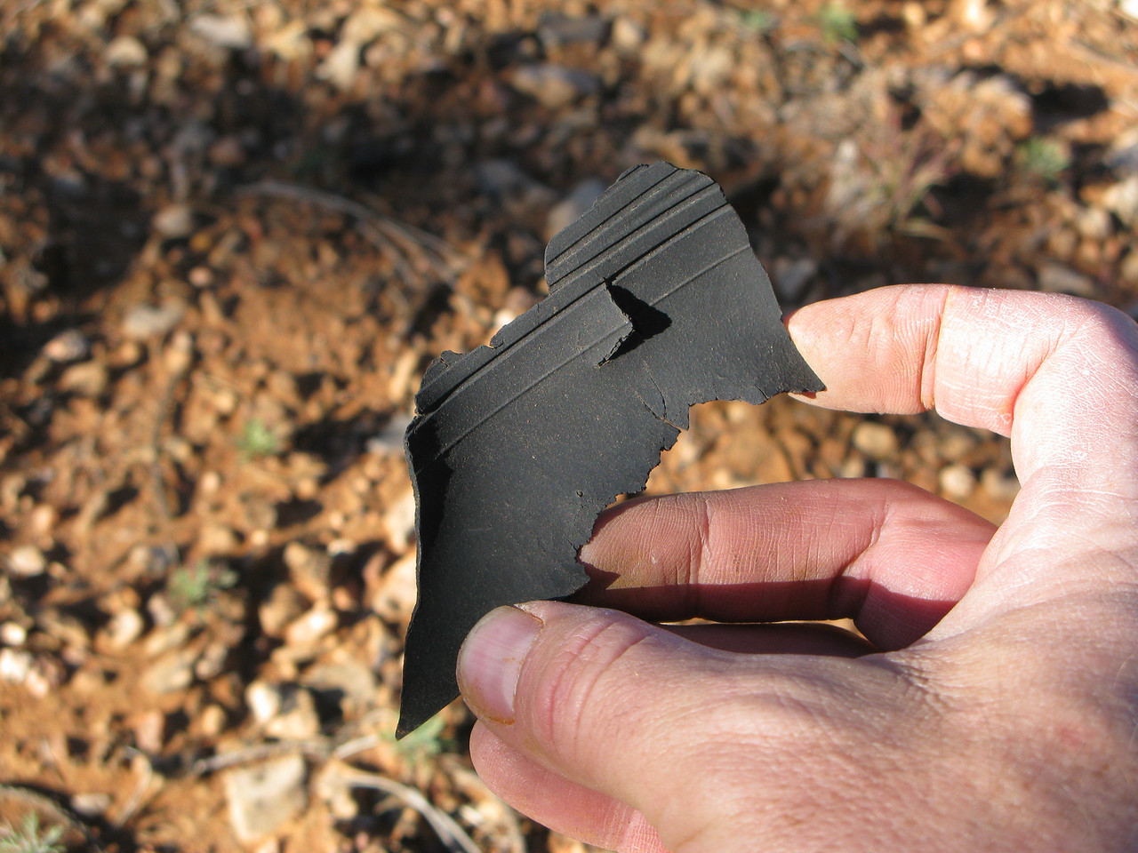 This fragment of rubber was once part of the propeller De-ice system. The groves in the rubber helped direct or guide alcohol De-ice fluid along a propeller blade and remove ice. <br /> <br /> Locating fragments such as this helps to determine what systems the aircraft was equipped with.