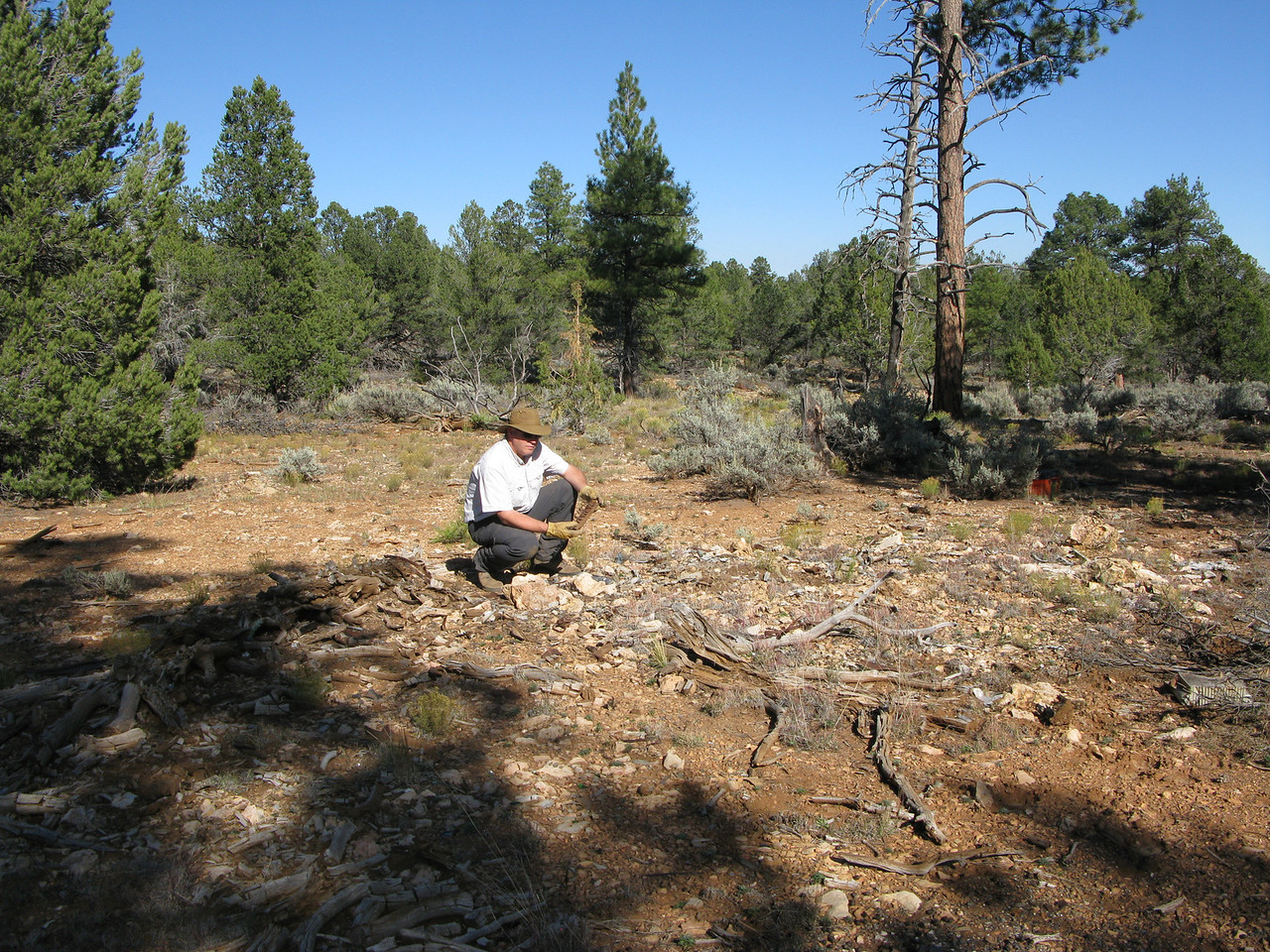 The burn area marks the location where the aircraft fuselage came to rest and caught fire. A number of cabin and cockpit components were found in this location.