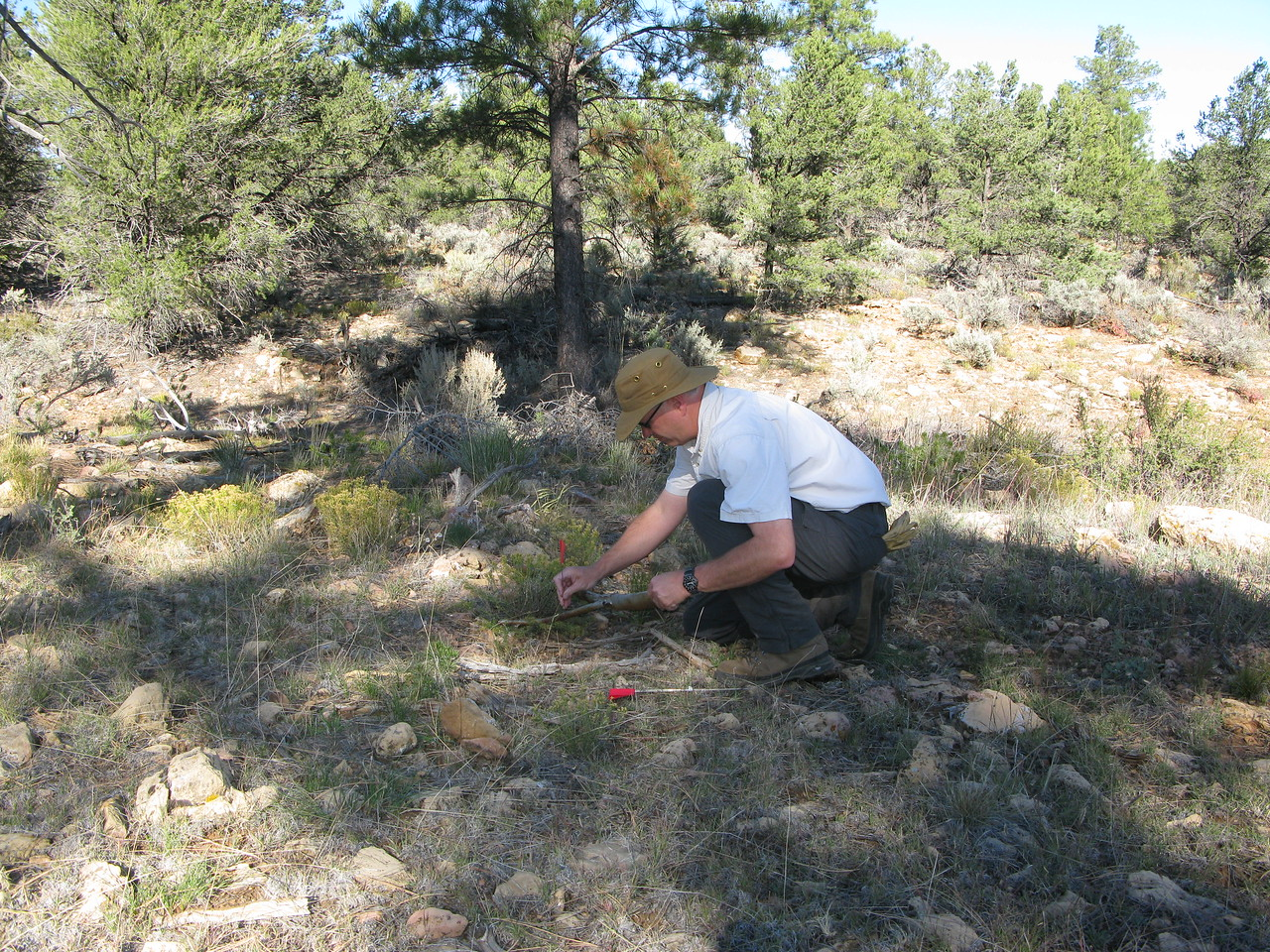 During my survey of the site, I marked aircraft wreckage locations with small red flags as well as GPS to map the site.