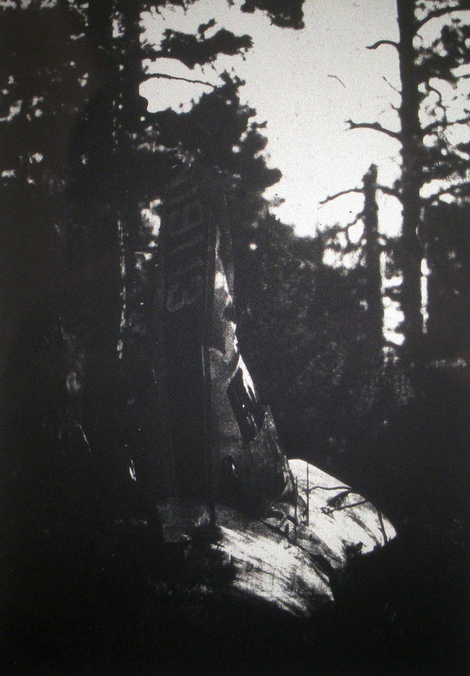 This newspaper photo illustrates how the aircraft came to rest in a vertical nose-down position. The aircraft struck a large pine tree which severed the tail section. The aircraft literally fell straight down into the forest with little if any forward movement.